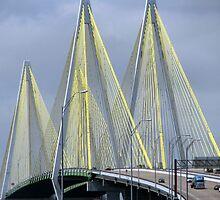 Fred Hartman Bridge by DottieDees