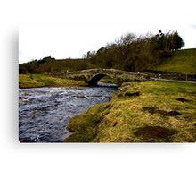 River Clover Bridge Canvas Print