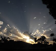 cloud of rays by louise levine