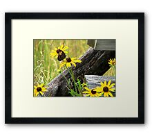 Country Meadow Framed Print