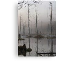 Daybreak - Blue Heron Rookery - Bridgton, Maine Canvas Print