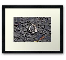 pluff mud and oyster  Framed Print