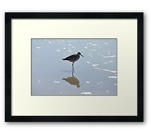 least sandpiper and shadow Framed Print