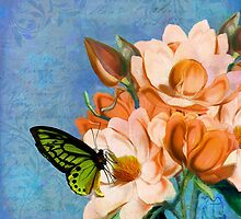 Periwinkle, peach magnolias, green butterfly vintage elements by Glimmersmith