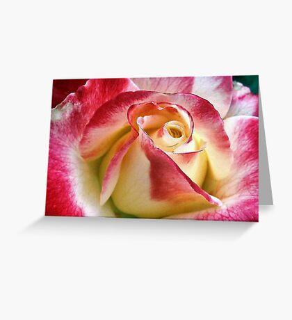 Exquisite Greeting Card