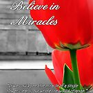 Believe in Miracles by Greeting Cards by Tracy DeVore