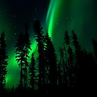 Northern Lights in our Yard # 3,My Faviorute Place by peaceofthenorth