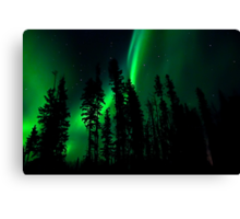 Northern Lights in our Yard # 3,My Faviorute Place Canvas Print