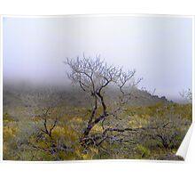 Low Clouds, Eldorado Mountains, Nevada Poster
