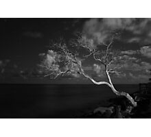North Shore at Night Photographic Print