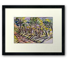 Vineyard, early morning. La Vigna Italy pen and wash 2010Ⓒ Framed Print