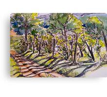 Vineyard, early morning. La Vigna Italy pen and wash 2010Ⓒ Canvas Print