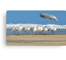 Conducting the Line Dance Canvas Print