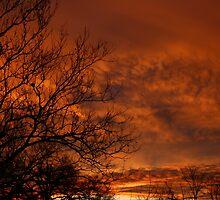 Christmas Sunrise by Robert McLain