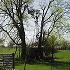Old Windmill with Rock Pump House and Water Trough on Route 66 by R.E Smith