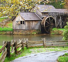Spring at the Mill by Darren Fisher