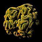 """""""Brain"""" by Marta69"""