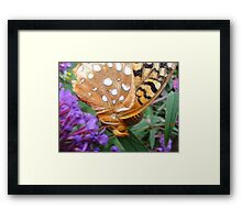 Butterfly In Your Face Framed Print