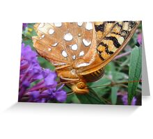 Butterfly In Your Face Greeting Card
