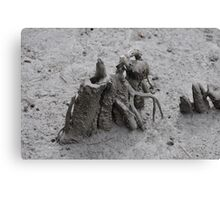 pluff mud and driftwood  Canvas Print