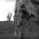 An Avebury stone by Justine Devereux-Old