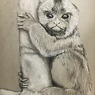 Finger Monkey  by Ray Jackson