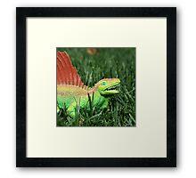 Jurassic Yard 2 Framed Print