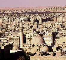 Aleppo Panorama from the Citadel by Stephen Bakalich-Murdoch