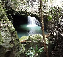 Natural Bridge (Arch) 2  by Wayne  Nixon  (W E NIXON PHOTOGRAPHY)