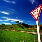 Give Way by Collette Johnson