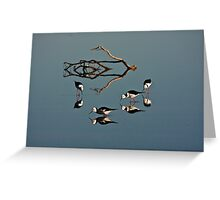 Four Black Winged Stilts Reflected Greeting Card