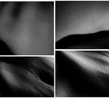 Body Landscapes III by Camila Bruce Photography