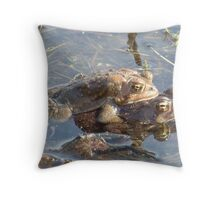 American toads mating. Throw Pillow