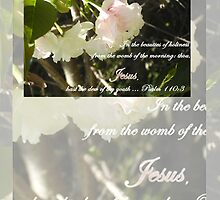 Psalm 110 Medium Poster Tall Reflections on The Purity of Jesus by manna