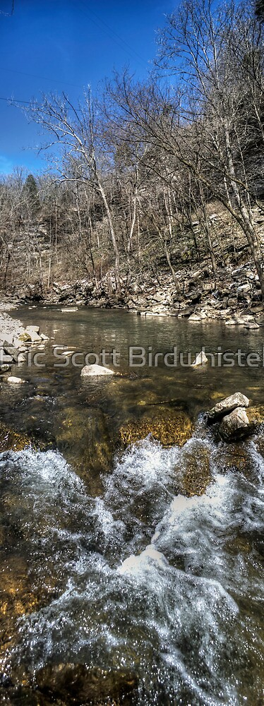 The View From Grimes Mill by Eric Scott Birdwhistell