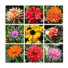 A collage of flowers  by Cody  VanDyke