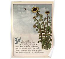 Gertie's Sunflower by George Lambert Mabel 1882 0011 So Lovely Poster