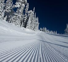 Crispy - Big White Ski Resort by Adam Smith