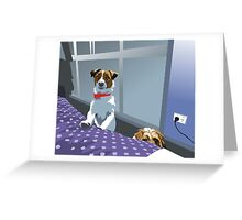 so ... are we allowed on the bed or not?! Greeting Card