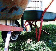 Wheelbarrows by Nat Symons