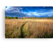 The Path Less Traveled Canvas Print
