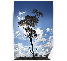 Blue tree 2 Poster
