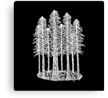 Coastal Redwoods Cathedral Ring Sketch - White Canvas Print