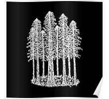 Coastal Redwoods Cathedral Ring Sketch - White Poster