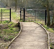 Pathway and Gate by Karen Martin