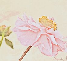 Sweet memories by IngeHG