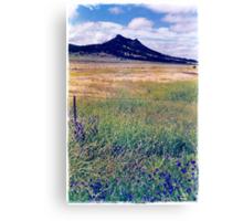 Flinders Ranges Canvas Print