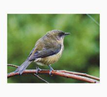My Mate Is More Handome  - Female Bellbird - NZ Kids Clothes
