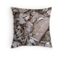 8.4.2010: 1960 Throw Pillow