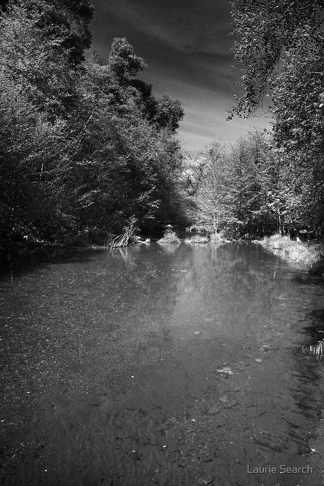 Lonely River by Laurie Search
